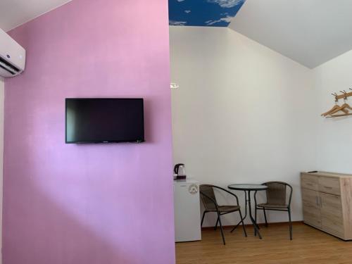 Телевизор и/или развлекательный центр в Guest House Shafran
