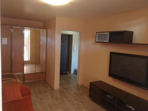 Телевизор и/или развлекательный центр в Apartment on Strel'nikova