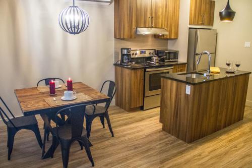 A kitchen or kitchenette at Le Viking Resort & Marina