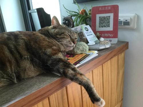 Pet or pets staying with guests at Wuju Wusu B&B