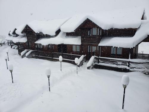 Hotel Banguriani зимой