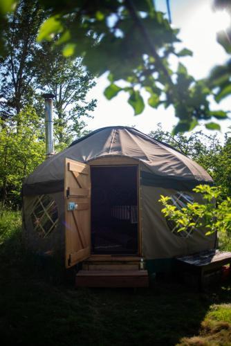 Dabinett Yurt