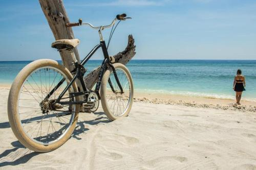Cycling at or in the surroundings of Scallywags Gili Air