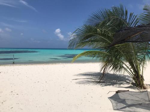 Pantai di atau di dekat hotel