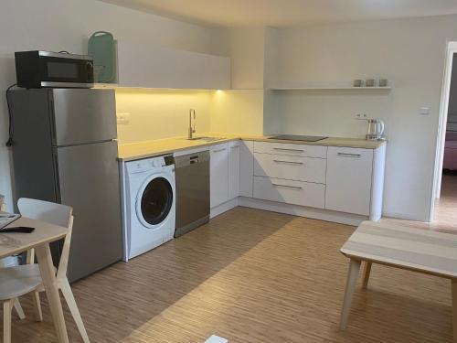 Kuchyň nebo kuchyňský kout v ubytování Red Travel Apartment
