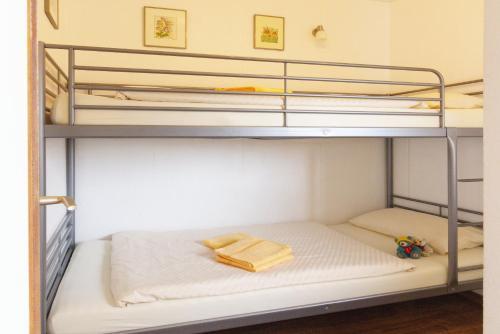 A bunk bed or bunk beds in a room at Frauenpreiß Ferienwohnungen