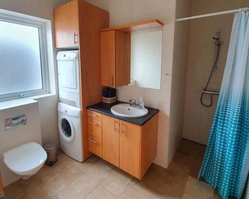 A bathroom at Saeluhus Apartments & Houses