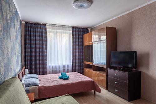 Телевизор и/или развлекательный центр в Economy Brusnika Apartment Kuzminki