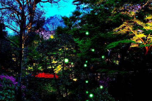 A garden outside Hotel Chinzanso Tokyo