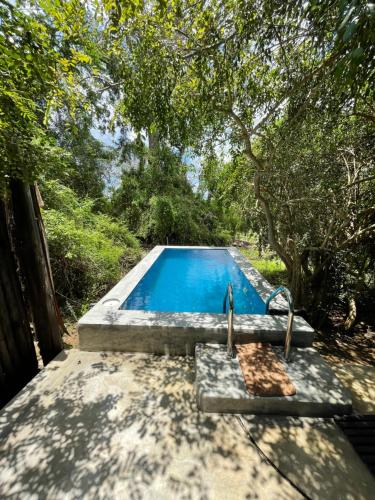 The swimming pool at or near Leopard Trails Yala