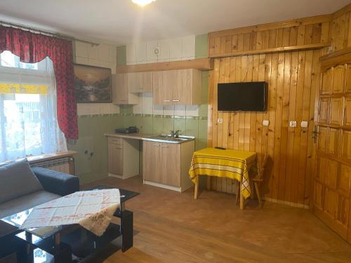 A kitchen or kitchenette at Kompleks Wypoczynkowy Harnaś II