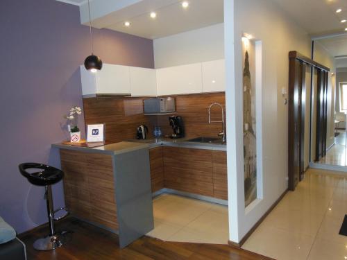 Kuchnia lub aneks kuchenny w obiekcie Apartament Studio Przy Deptaku