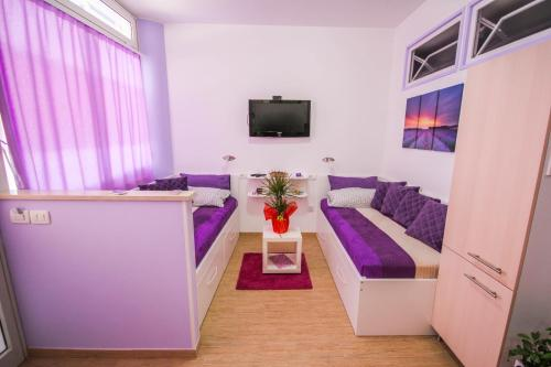 A television and/or entertainment center at Apartments Lavanda & Cappuccino