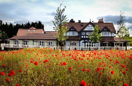 The Red Lion Inn by Greene King Inns