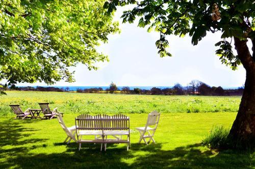 En trädgård utanför Torsborgs Gård