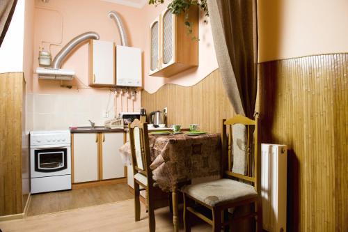 Küche/Küchenzeile in der Unterkunft Lviv Centre Apartment