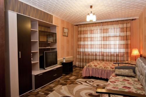 Телевизор и/или развлекательный центр в Uyut Apartments Chekhova
