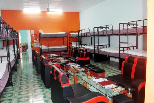 Giường tầng trong phòng chung tại Phong Nha Backpacker Hostel