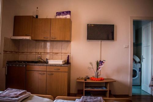 Kuhinja ili čajna kuhinja u objektu Apartments Calendula Rubic