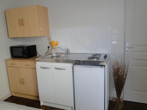 Cuisine ou kitchenette dans l'établissement Studio Dadi