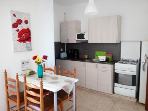 Kuhinja oz. manjša kuhinja v nastanitvi Elenapa Holiday Apartments