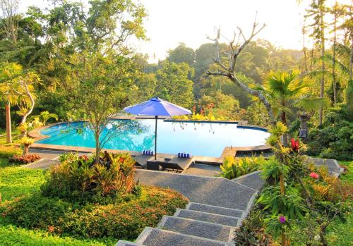 The swimming pool at or close to Villa Capung Mas Ubud