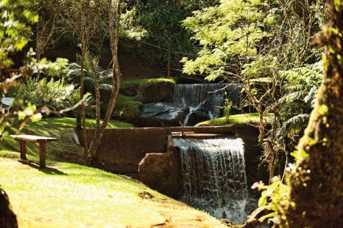 Um jardim em Grande Hotel Campos do Jordao
