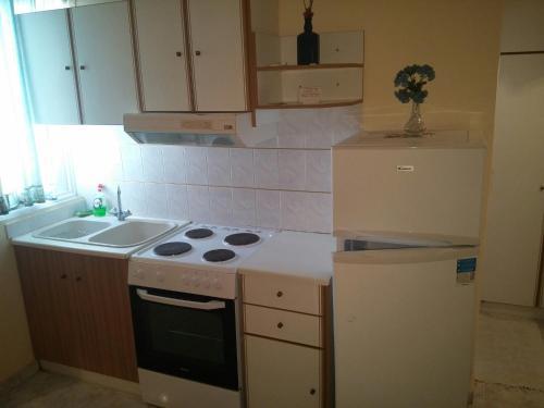 Η κουζίνα ή μικρή κουζίνα στο Mitseas Apartments