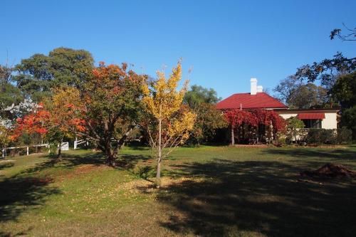 A garden outside Four Chooks Cottage