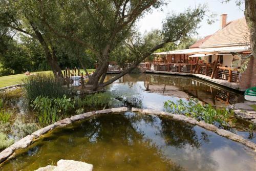 Bazén v ubytovaní Palenica Jelsovce alebo v jeho blízkosti