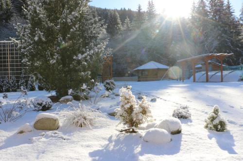 Simply Relax - Chopok v zimě