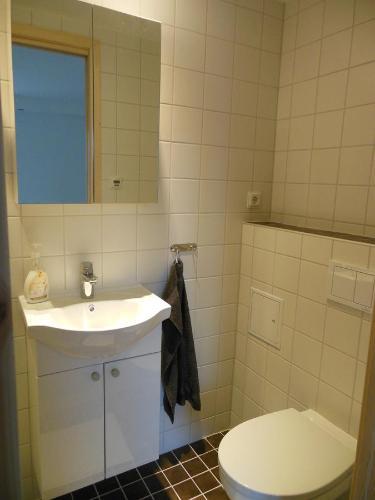 A bathroom at Gästrum Gnottnehult