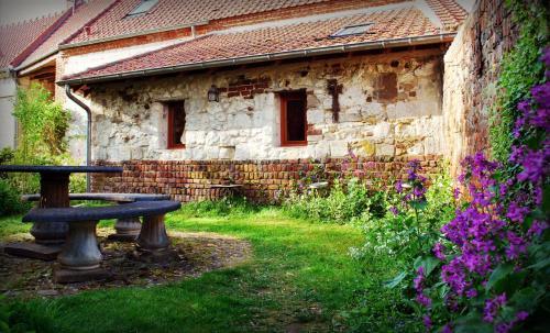 A garden outside Chez Fifine