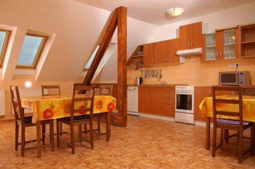 Küche/Küchenzeile in der Unterkunft Penzion-Apex