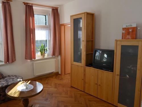 TV/Unterhaltungsangebot in der Unterkunft Apartment Grünbach 2