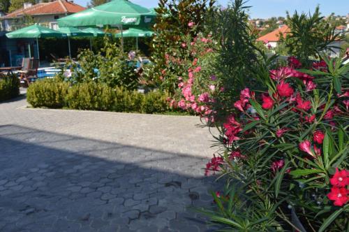 Градина пред Ива Резорт
