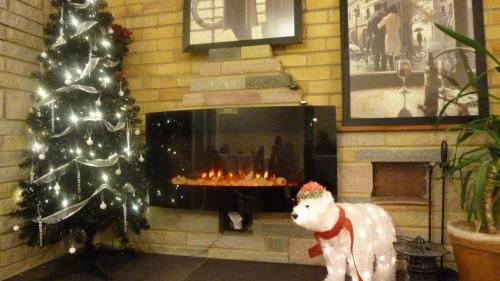 Pet or pets staying with guests at Stansted Inn