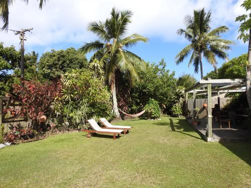Jardin de l'établissement Aremango Guesthouse