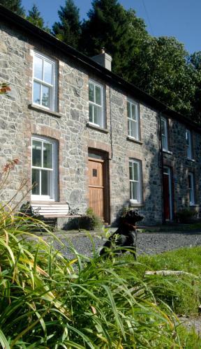 Bronfelin & Troed-y-Rhiw Holiday Cottage