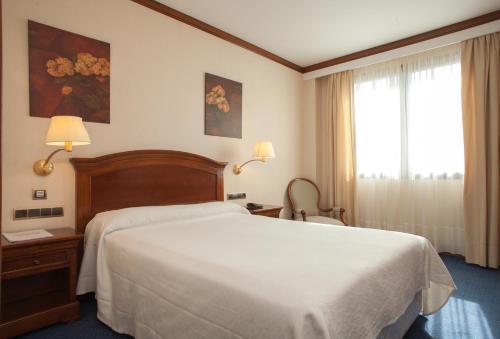 Hotel Villa De Almazan