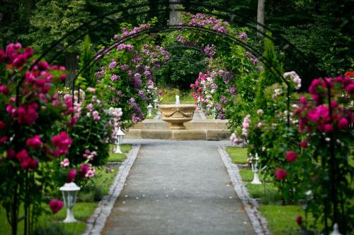 Zahrada ubytování Zámek Jemniště