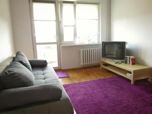 Telewizja i/lub zestaw kina domowego w obiekcie Troyl Apartament