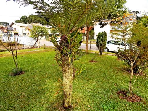 Um jardim em Chale da Serra 02