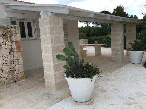 Patio o area all'aperto di Villa Serena