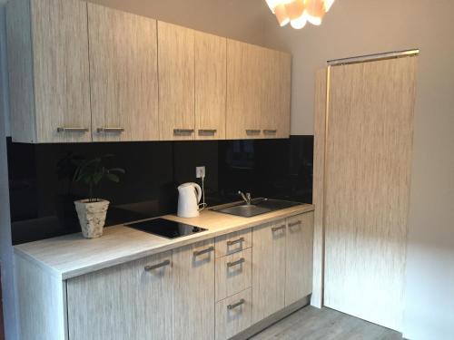A kitchen or kitchenette at Kawalerka Fredry 3/12