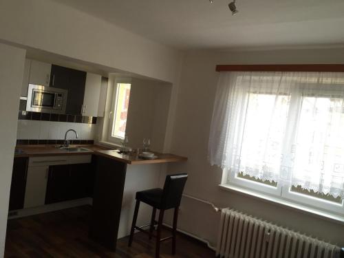 Kuchyň nebo kuchyňský kout v ubytování Studio Ostrava - Masarykovo náměstí