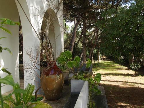 Patio o area all'aperto di Villa Emma