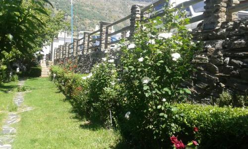 Jardín al aire libre en Apartamentos Rurales Panjuila