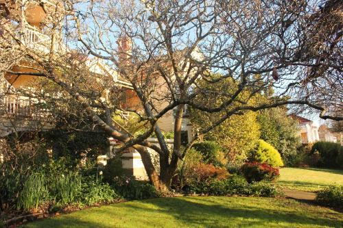 A garden outside Turret House