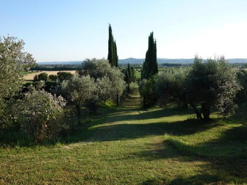 A garden outside Bella di Ceciliano
